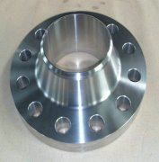 Weld Neck Stainless Forged Flange