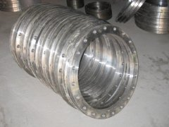 Forged Weld Neck Flange
